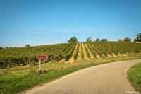 Les routes calmes du Gers