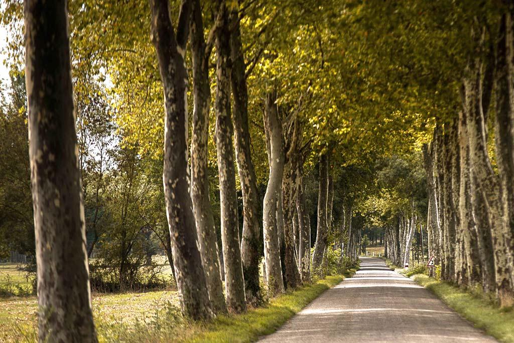 De belles routes calmes et paisibles